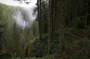 North_Falls,_Silver_Falls_State_Park,_Oregon_(8357247118)