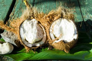 sprouted coconut open