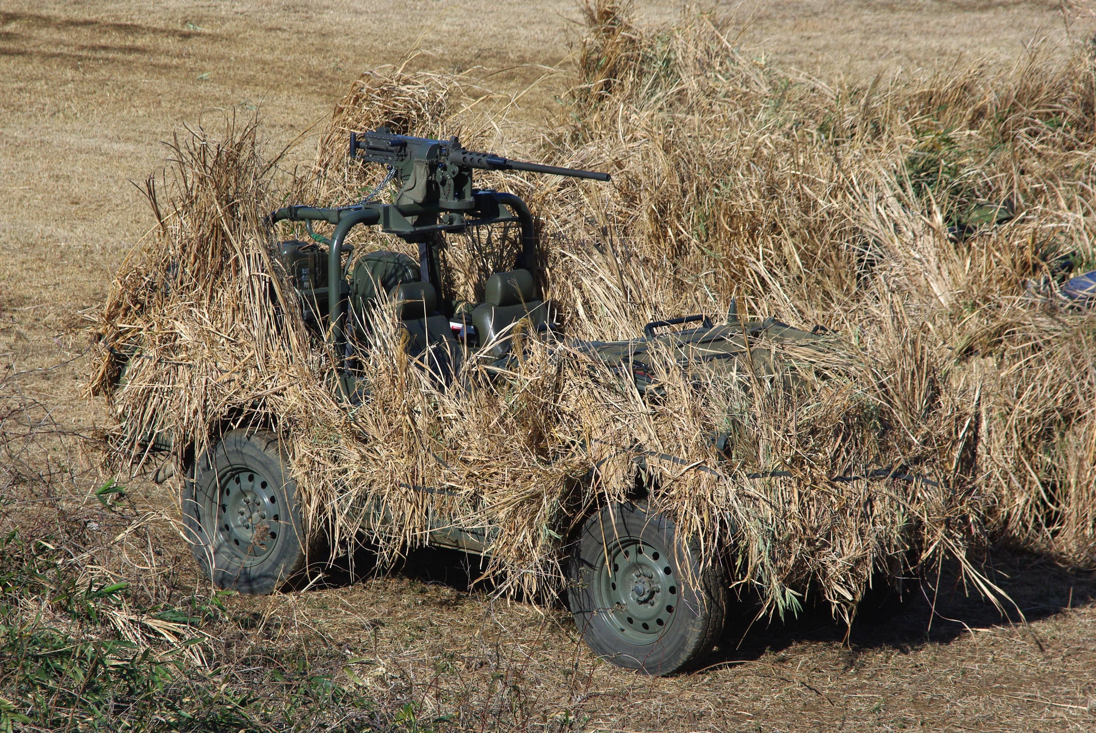 Vehicle Camo Ideas
